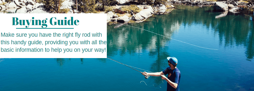 Best Fly rod Buying Guide