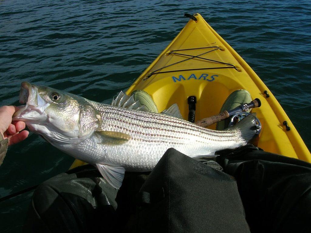 best inexpensive kayak