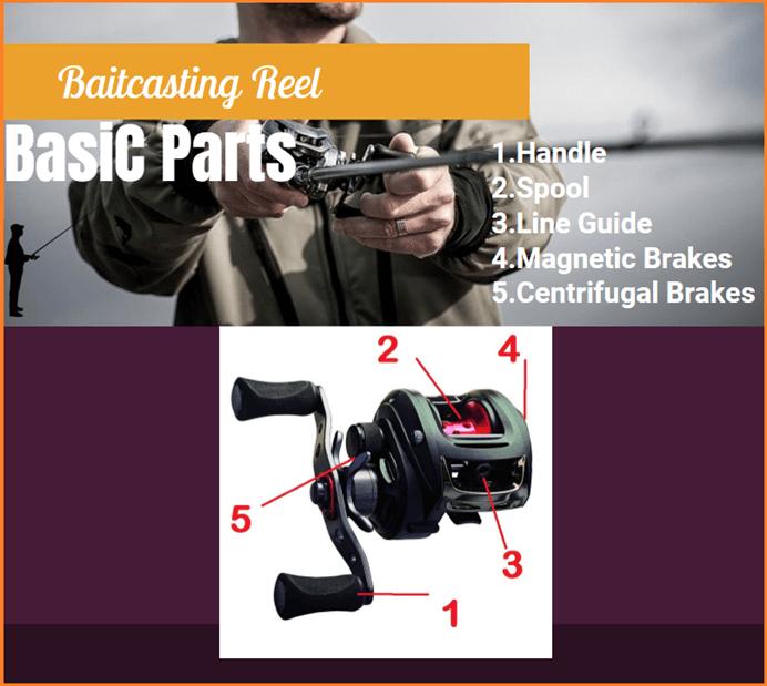 Baitcasting reels basic parts
